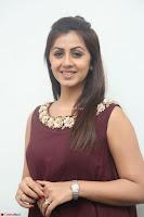 Nikki Galrani in a Brown Shining Sleeveless Gown at Nakshatram music launch ~  Exclusive 009.JPG