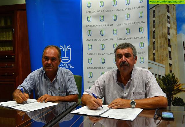 El Cabildo contrata la mejora de la red contra incendios forestales de Puntagorda