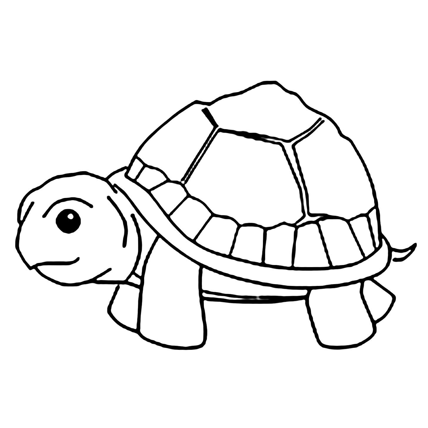 Tranh cho bé tô màu con rùa 0