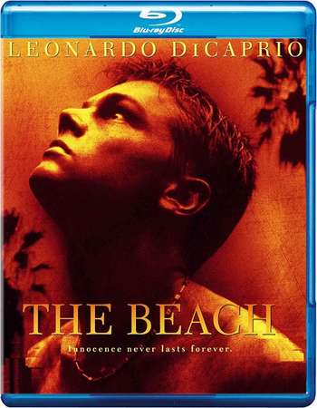 The Beach 2000 UNRATED Dual Audio Hindi 480p BRRip 350mb