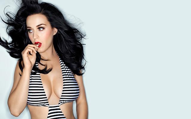 Biografi Katy Perry