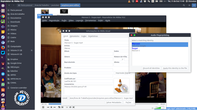 VLC Metadata