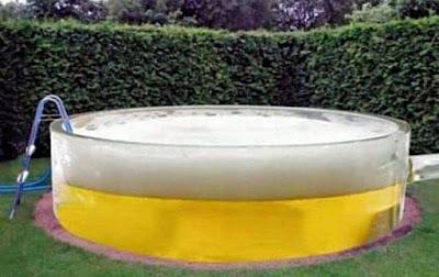 Lustige Bilder mit Bier Pool