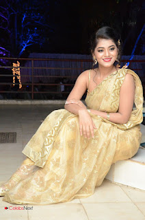 Actress Yamini Bhasker Pictures in Saree at anic Movie Audio Launch  0093.JPG