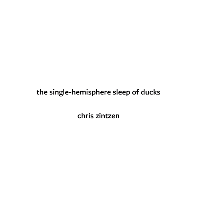 the single-hemisphere sleep of ducks © Chris Zintzen | panAm productions 2019