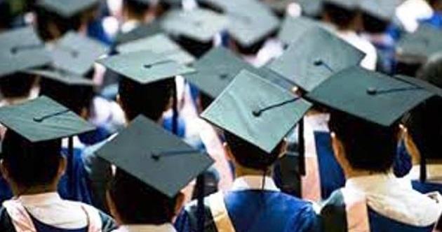 7 Fakta Yang Menyebabkan Banyaknya Lulusan Sarjana Yang Menganggur Di Indonesia