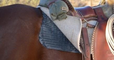 Functional Horsemanship Saddleskin Saddle Pad