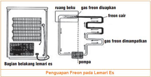 Pemanfaatan proses penguapan pada freon lemari es - kulkas