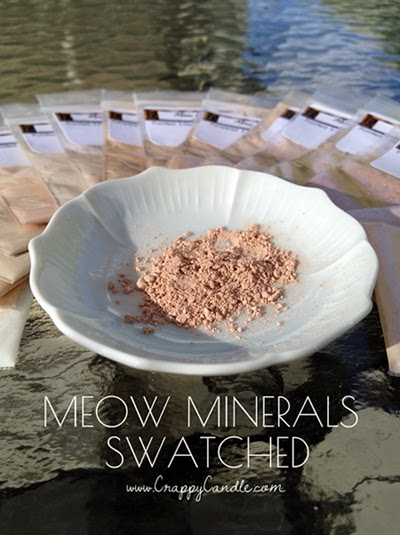 Natural Foundation :: Meow Minerals Swatches