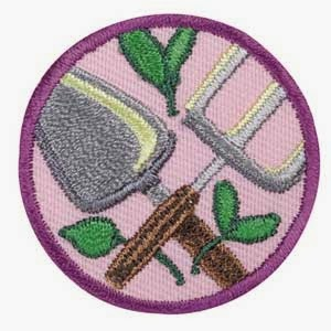 Girl scout leader 101 2013 im going to start this by saying that we did this badge in the fall yep not the perfect planting season but that was on purpose solutioingenieria Gallery