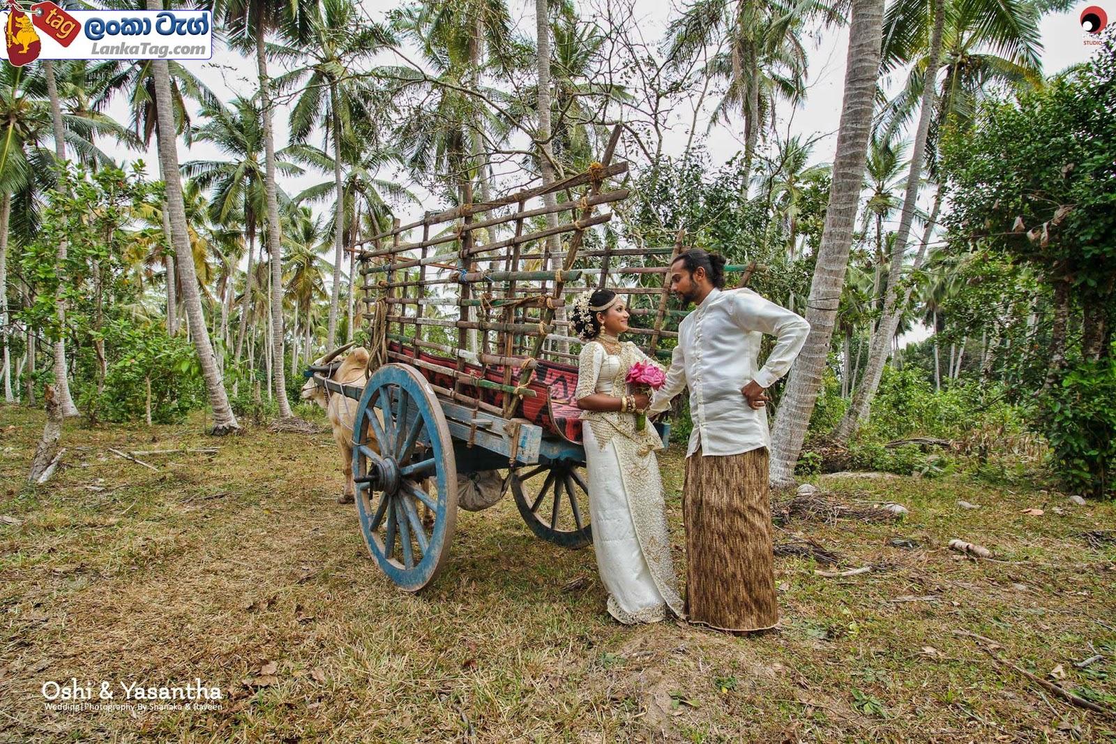 sri lankan wedding dress  10