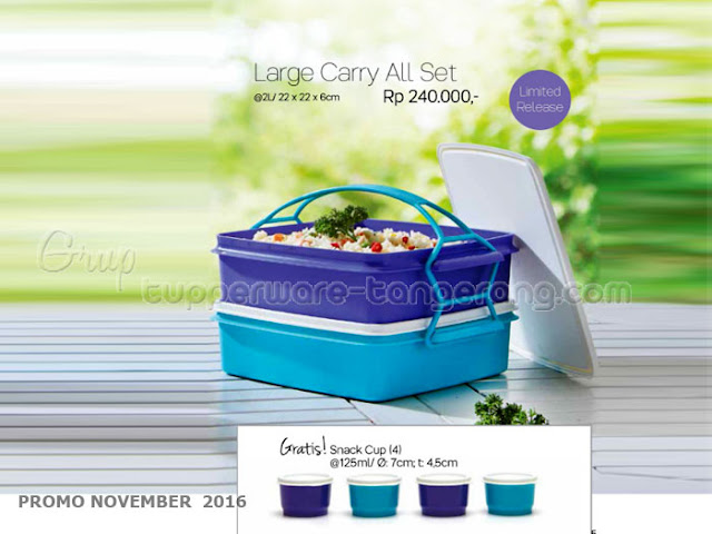 Large Carry All Set Promo Tupperware November 2016