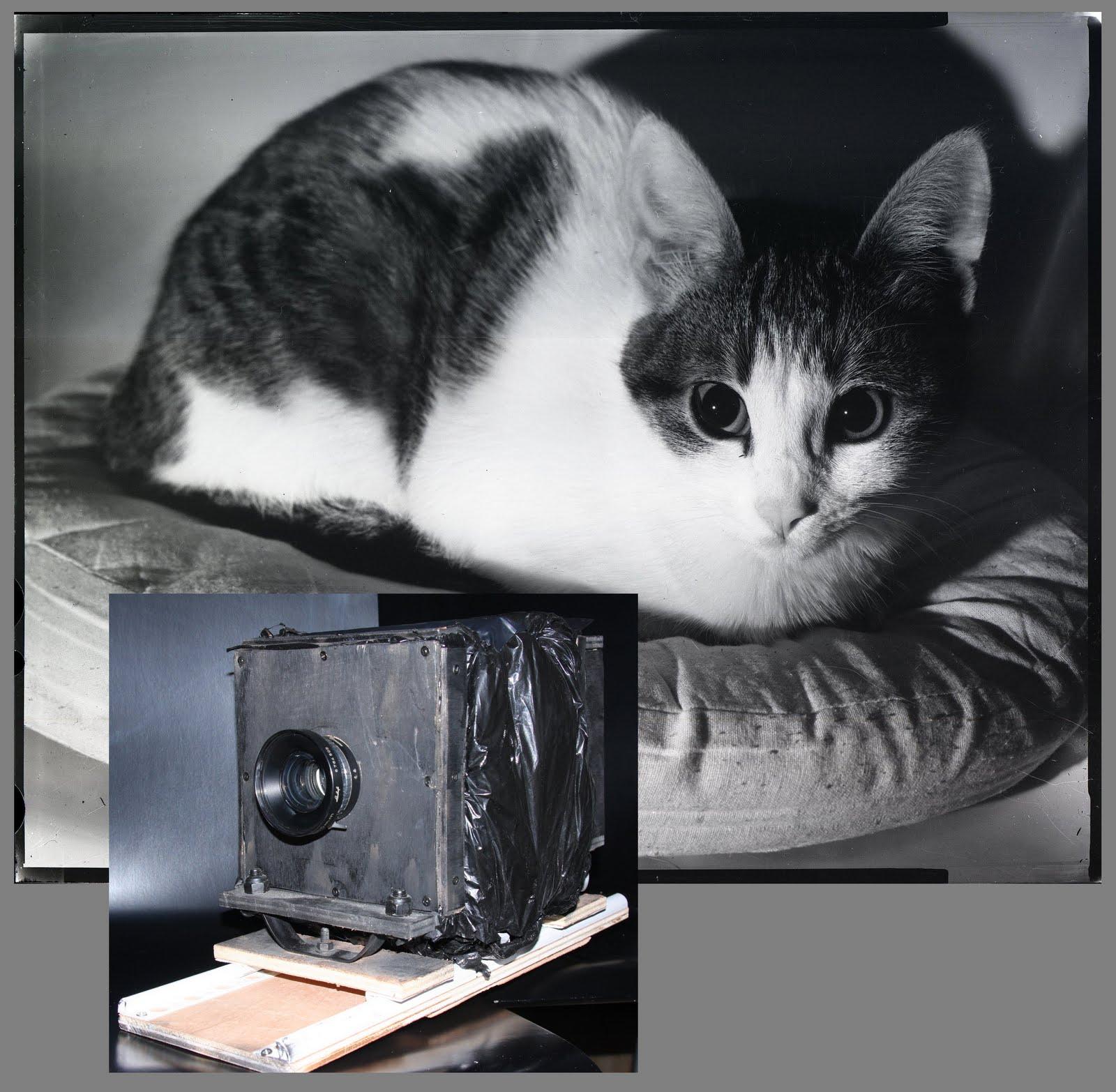 Chambre 4x5: Mr Brico Broc: Cameras DIY