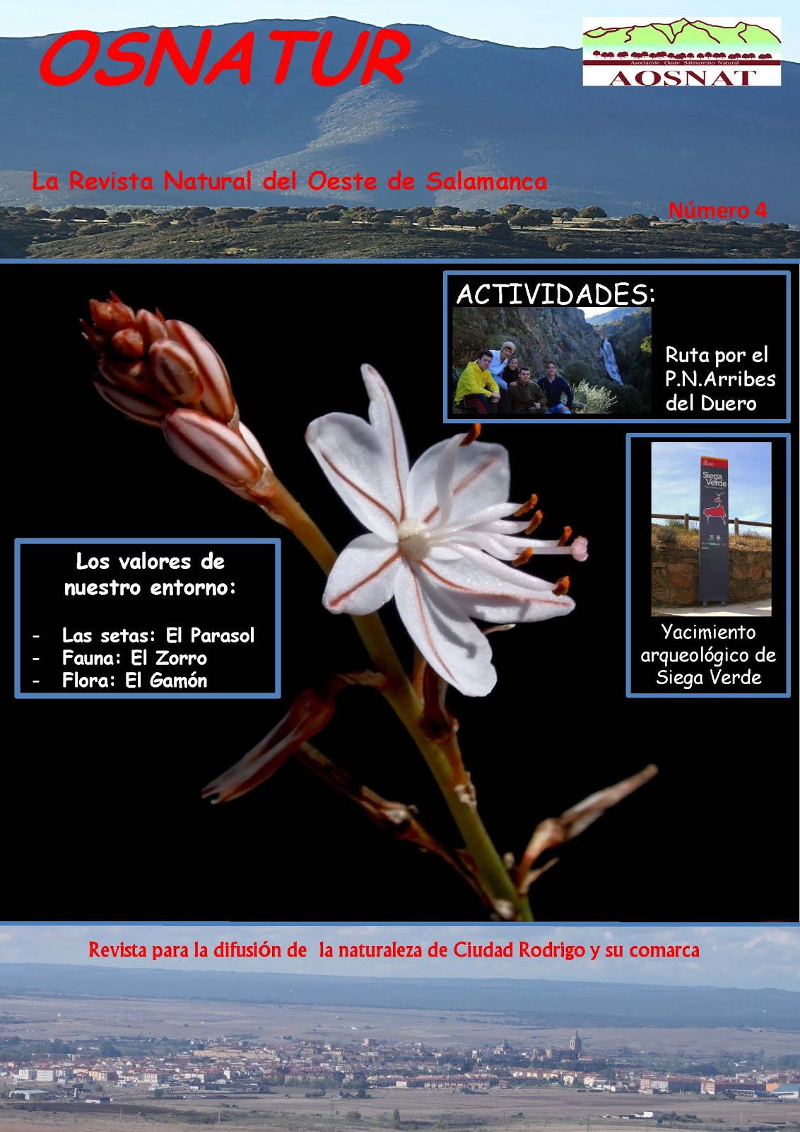 Revista Osnatur Nº 4