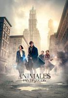 Animales Fantasticos y Donde Encontrarlos 2016 [CAM] [Latino] [1 Link] [OPENLOAD]