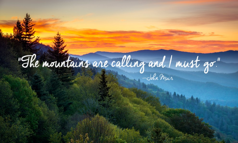 50 Best Nature Captions for Instagram Travelers around the World