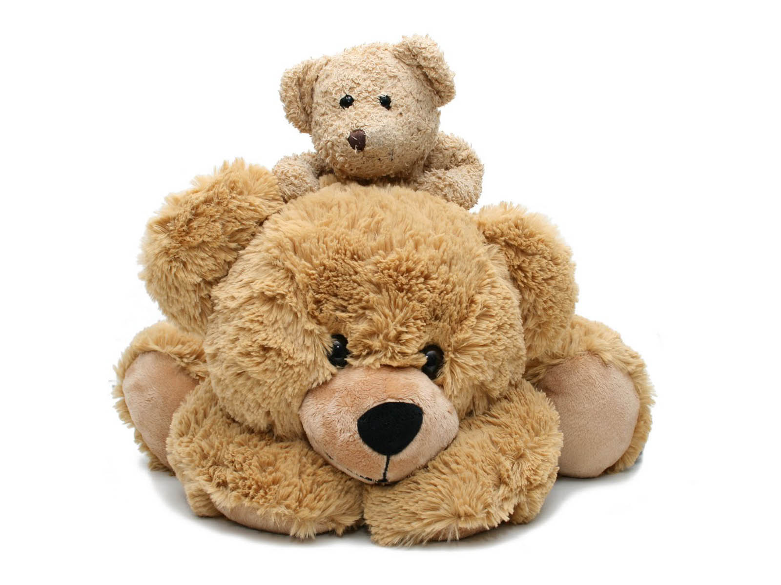 HD Wallpapers: Teddy Bear Pictures
