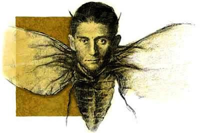 Kafka-Metamorfosis