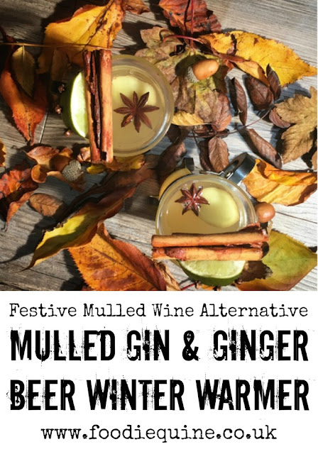 www.foodiequine.co.uk Mulled Gin and Ginger Beer. The perfect hot drink for Christmas and cold nights. A mulled wine alternative for Gin lovers.