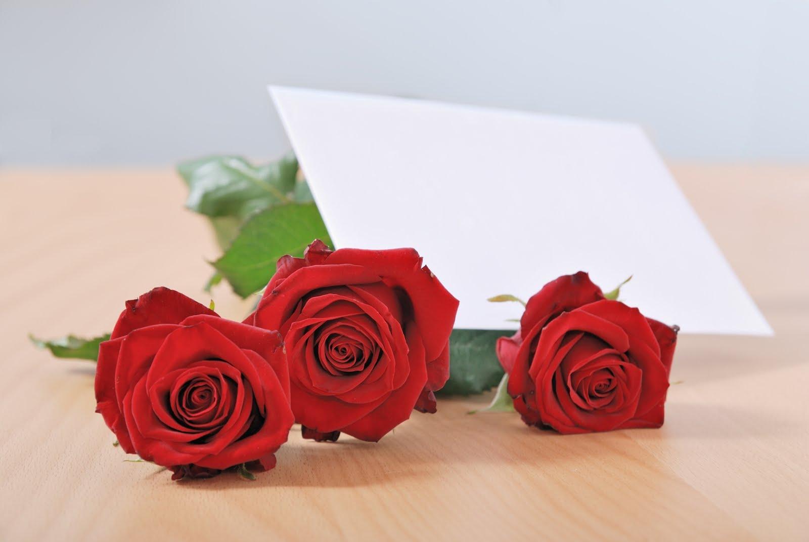 Tarjeta De Rosas De Amor Postales Rosas Rojas Rio Banco De