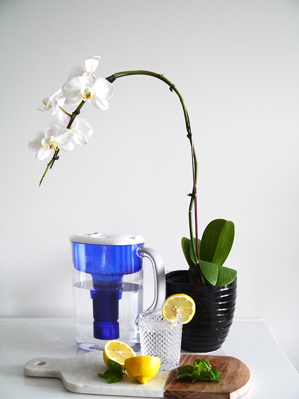 Pur water filtration pitcher and water filter system