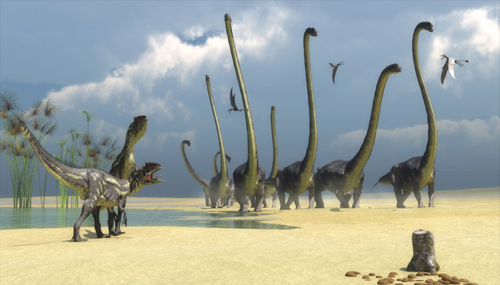 Footprints believed to have belonged to the massive titanosaur found in Gobi desert.