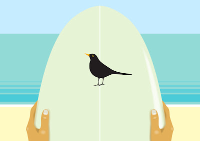 blackbird on surfboard