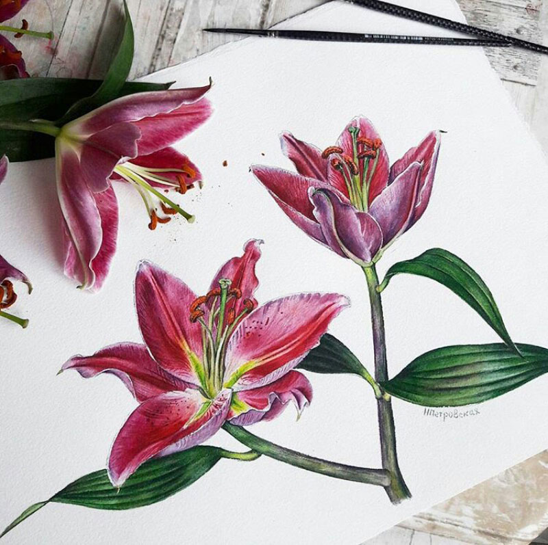 lukisan botanical