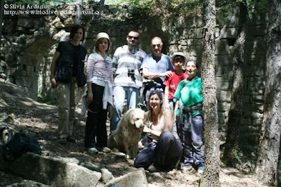 http://www.biodiversidadvirtual.org/insectarium/Participantes-Testing-Punto-BV-Espacio-Pirineos-Graus-9-5-2015-img691439.html