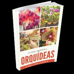 ebook como cuidar de orquideas