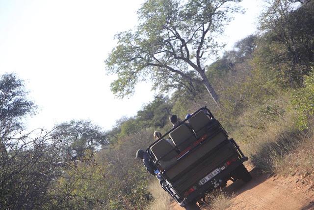 Safari por el Parque Kruger, Sudáfrica