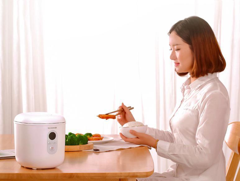 xiaomi mini cooker