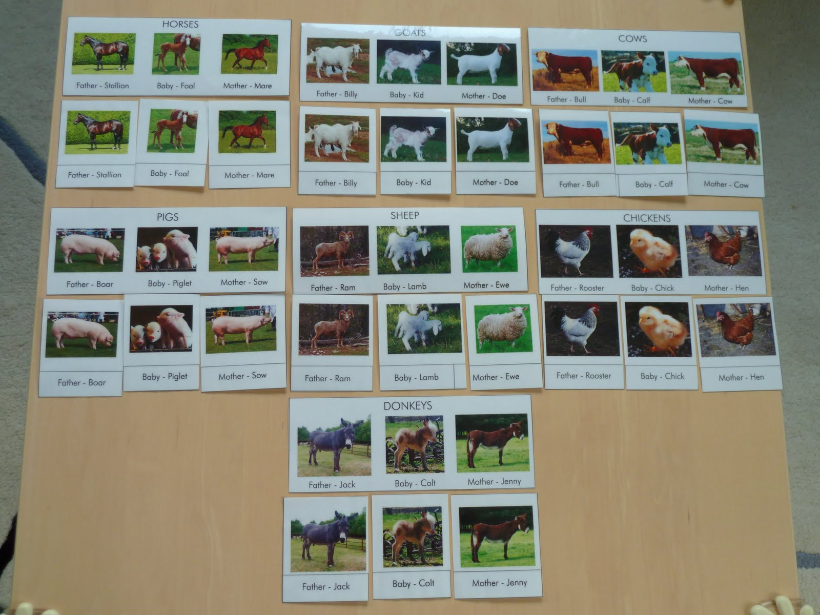 Family Fecs Montessori Activity Matching Family Of Farm