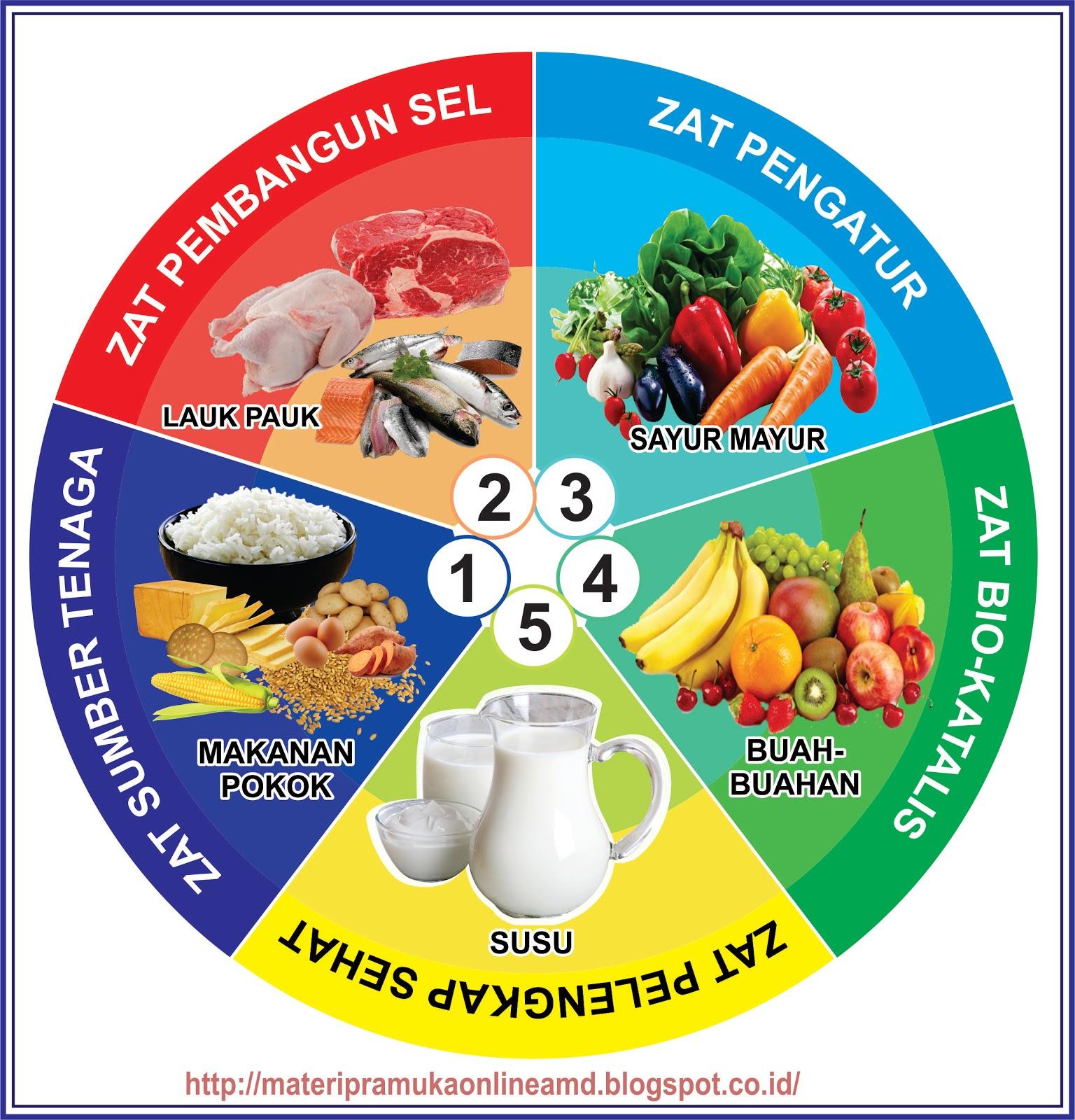 Gambar Mewarnai Makanan Empat Sehat Lima Sempurna Sukagambarku