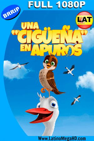 Una Cigueña en Apuros (2017) Latino FULL HD 1080P ()