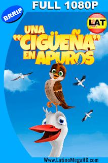 Una Cigueña en Apuros (2017) Latino FULL HD 1080P - 2017