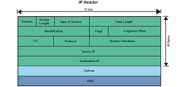 IP Header Details