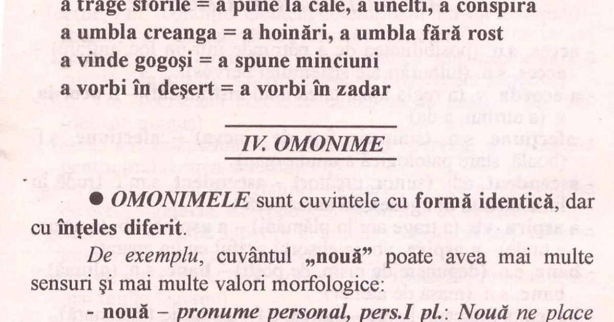 Omografe omofone