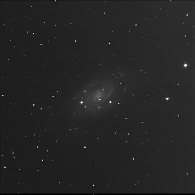 RASC Finest galaxy NGC 2403 luminance