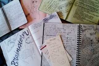 Amy Lukavics's journals