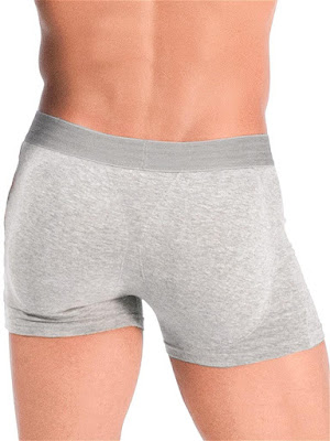 Rounderbum Padded Boxer Brief Underwear Grey Back Detail Gayrado Online Shop