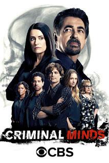 Mentes criminales Temporada 13