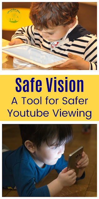 Safe Vision: a Tool for a Safer YouTube Experience