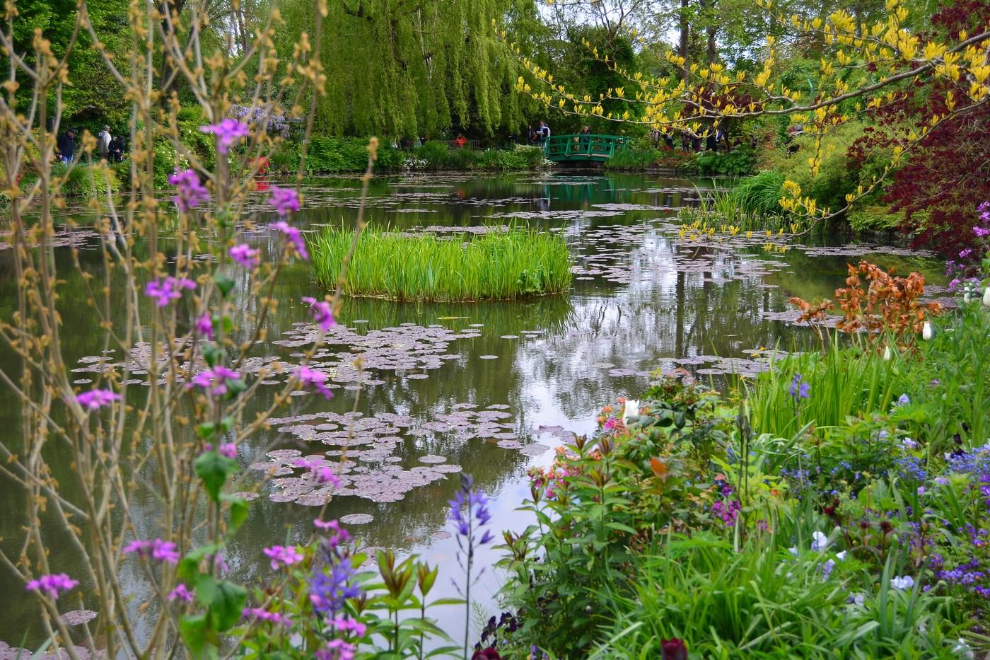 Arbres, plantes, pont japonais... et bien entendu l'eau, voilà le cocktail qui occupera Monet durant de nombreuses années. A force de peindre les nymphéas en captant les moindres variations de lumière et de couleurs, le peintre réussira à pousser sa peinture aux limites de l'art abstrait.