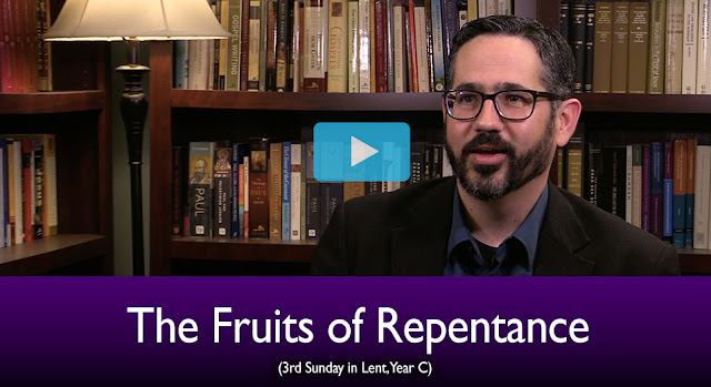 The Mass Readings Explained: The Fruits of Repentance (3rd Sunday of Lent)