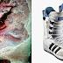 Khám Phá: Xác ướp Mông Cổ 1500 tuổi đi giày Adidas