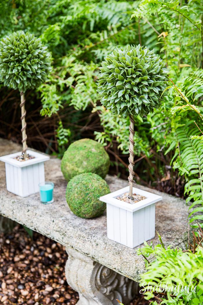 boxwood-topiaries-moss-balls