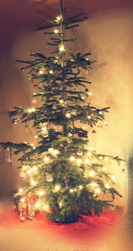 Wild Child: Weihnachtsgeschenke