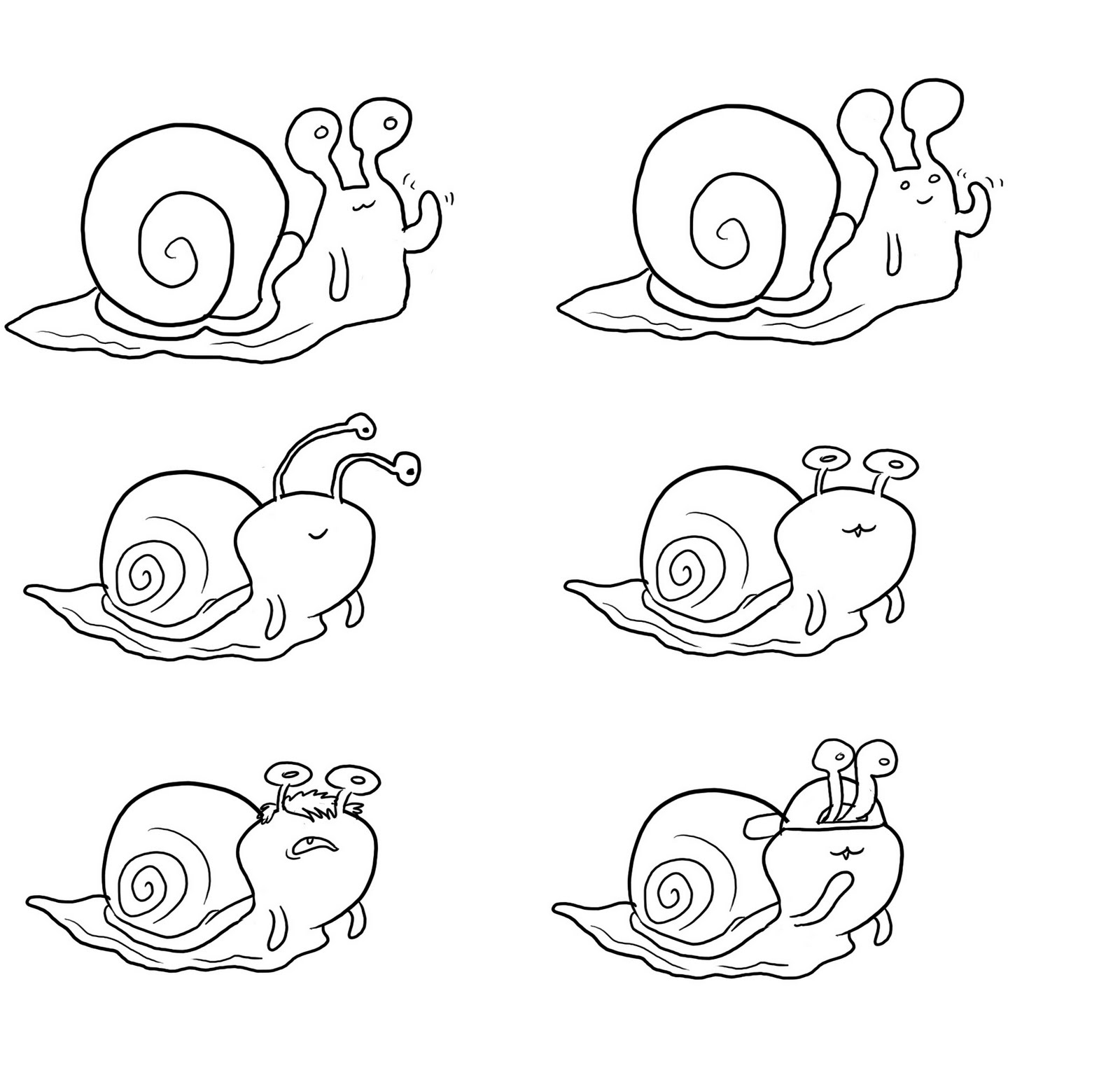 Animals World Snails Moving On Plants Roads Leaves