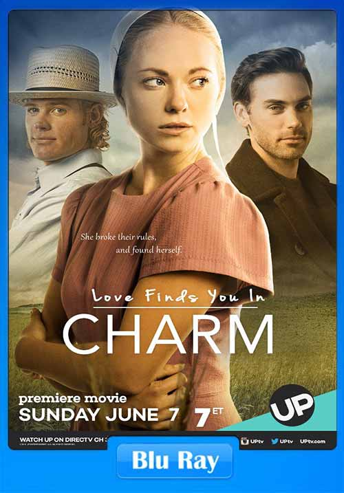 Love Finds You In Charm 2015 HEVC BluRay 100MB x265 Poster